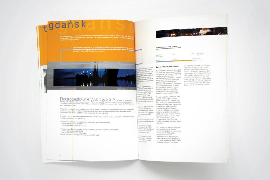 EDF Raport środowiskowy 2002